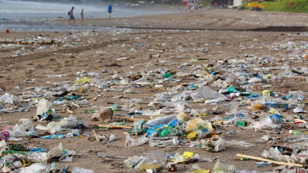 Plastica monouso vietata dal 3 luglio 2021: cosa non si potrà più usare