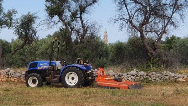 trattore cooperativa semi di vita
